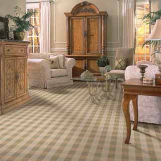 steam carpet cleaning in Chicago upholstery steam cleaning
