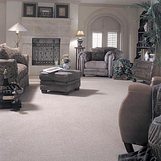 steam carpet cleaning in Connecticut upholstery steam cleaning