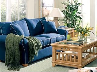 steam carpet cleaning | upholstery steam cleaning